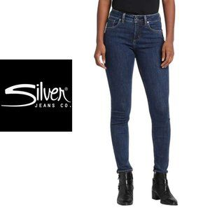 Silver Jeans Avery High-Rise Skinny - Size 25